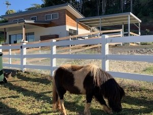 Accessible Therapeutic Farm stay